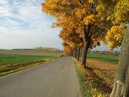 Goldener Oktober 2012
